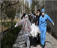 وفيات فيروس كورونا في إيران تتخطى الـ«25 ألفًا»