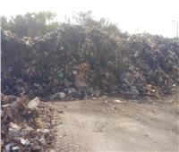 إزالة ورفع 890 طن من القمامة والمخلفات بنطاق حي ثان الإسماعيلية