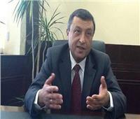 خاص  وزير سابق يتوقع ارتفاع إنتاج مصر من المنتجات البترولية خلال عامين
