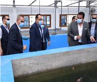 رئيس الوزراء يتفقد الأعمال الإنشائية لمشروع مركز علاج الأورام بكفر الشيخ