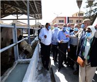 صور.. «مدبولي» يتفقد مركز التدريب على رعاية الحيوان بكفر الشيخ