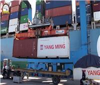 تداول 19 سفينة حاويات وبضائع عامة بميناء دمياط