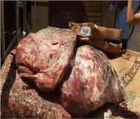 ضبط 4,51 طن أسماك ولحوم فاسدة بالقليوبية