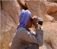 «الوعل النوبي» على ناصية الانقراض.. والبيئة توجه بحمايته وضبط المخالفين
