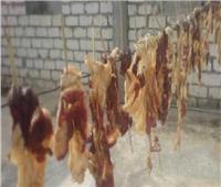 صور|الجلايا والقديد وأبومردم.. أكلات بدوية في صحراء مصر الغربية