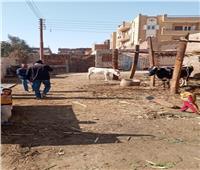 صور| تاجر بسوهاج يخالف القانون رغم تحرير 3 محاضر بيئية له