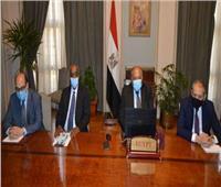 شكري: مصر تواصل جهودها حتى يعود الأمن والاستقرار إلى كافة ربوع ليبيا