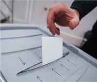 قري الغربية تسعي لتشكيل تكتلات تصويتية لدعم مرشحيها في انتخابات النواب