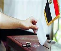 القائمة الوطنية تنجح فى اختيار أكبر كتلة تصويتية بالبحر الأحمر و31 مرشحا يتصارعون على الفردى