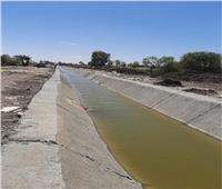 نقابة الفلاحين: تبطين الترع يستهدف 7 آلاف كيلومتر لترشيد المياه