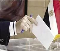 """انتخابات البرلمان  """"الكيبورد العربي"""" هدية الهيئة للمصريين بالخارج"""