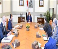 الرئيس السيسي يتابع مشروعات تنمية سيناء وجنوب الوادي بالعوينات وتوشكى