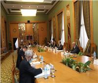 تفاصيل اجتماع اللجنة العليا الدائمة لحقوق الإنسان
