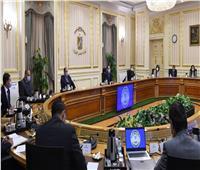 الحكومة: مشروع كيما بأسوان ومحلج الفيوم المطور جاهزان للافتتاح