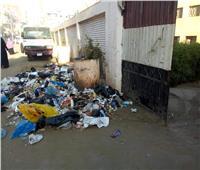 صور| تراكم أكوام القمامة أمام مدارس قرية «البتانون» بالمنوفية
