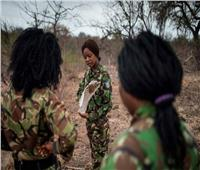 حكايات| «الأكاشينجا».. لمحات من دفتر أحوال المحاربات من أجل البيئة