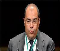 محمود محيي الدين مديراً تنفيذيا لصندوق النقد الدولي