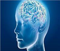 مفاجأة جديدة في دماغ الإنسان