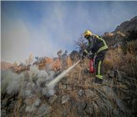إصابة 5 أشخاص أثناء مكافحة الدفاع المدني السعودي لحرائق غابات