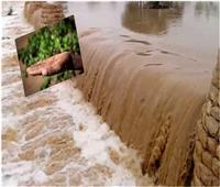 ترشيد المياه «الفرض المنسي».. ما هي استراتيجية «الاستفادة القصوى» من الأمطار ؟