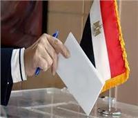 إغلاق صناديق الاقتراع وانتهاء التصويت باليوم الثاني.. وبدء الفرز في اللجان