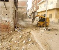 رفع القمامة وصيانة الكهرباء فى مدينة أبوصوير بالإسماعيلية