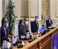 رئيس الوزراء يشدد على استمرار تطبيق إجراءات مواجهة كورونا