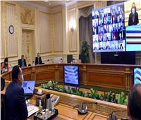 مجلس الوزراء يوافق على تصنيع وتجميع مشتقات البلازما