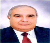 بالصور| سفارة كازاخستان تكرم رئيس المحكمة الدستورية