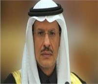 السعودية: 50% من طاقتنا الكهربائية سننتجها من المصادر المتجددة