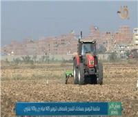 فيديو| الزراعة: «المصاطب» تقلل استهلاك المياه والتقاوي وتزيد المحصول
