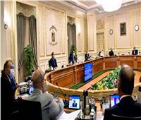 الحكومة: تخصيص قطع أراضي لصالح وزارة الكهرباء