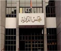مجلس الدولة يرفض الترخيص لمحام بحمل سلاح شخصي