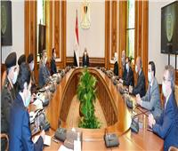 الرئيس السيسي يوجه بالبدء الفوري في إنشاء مراكز تجميع مشتقات البلازما
