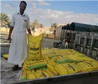 تقاوي قمح مجانية لزراعة حقول إرشادية في سيوة