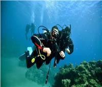 «البيئة»: عودة الغوص الابتدائى بمحميات جنوب سيناء ديسمبر المقبل