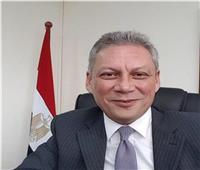 مندوب مصر لدى جامعة الدول العربية يقدم أوراق اعتماده