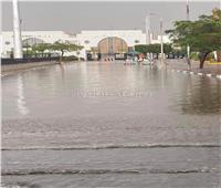 أول تعليق من محافظة القاهرة على غرق مدخل ستاد القاهرة بسبب الأمطار «خاص»