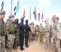 جاهزية القوات العربية لمجابهة التحديات.. رسائل رئيس الأركان بـ«سيف العرب»