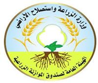 محافظ الوادى الجديد: معرض لبيع منتجات الهيئة العامة لصندوق الموازنة الزراعية