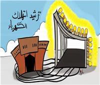 ندوة عن آليات ترشيد استهلاك الكهرباء ببورسعيد