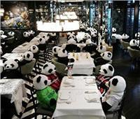 «الباندا» بديل الزبائن بمطعم ألماني