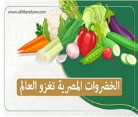 إنفوجراف| الخضروات المصرية تغزو العالم والثوم في المقدمة
