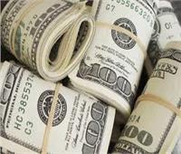 استقرار سعر الدولار أمام الجنيه بختام تعاملات اليوم 29 نوفمبر
