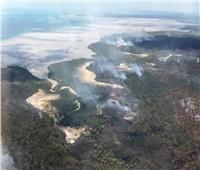 حرائق الغابات في استراليا تجتاح جزيرة «فريزر»