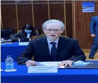 سفير اليابان بالقاهرة: سنواصل دعم مصر بمشروعات الكهرباء والطاقة