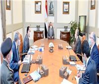 الرئيس السيسي يتابع المشروع القومي لتجميع الألبان على مستوى الجمهورية