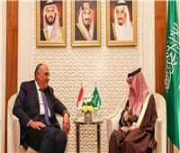 السعودية تؤكد دعمها لمصر في أزمة سد النهضة