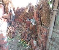 المنوفية: استمرار رصد وإزالة التعديات المخالفة علىالأراض الزراعية