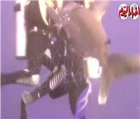 شاهد| شجاعة مرشد غوص مصري تنقذ سائحة من «هجوم قرش»